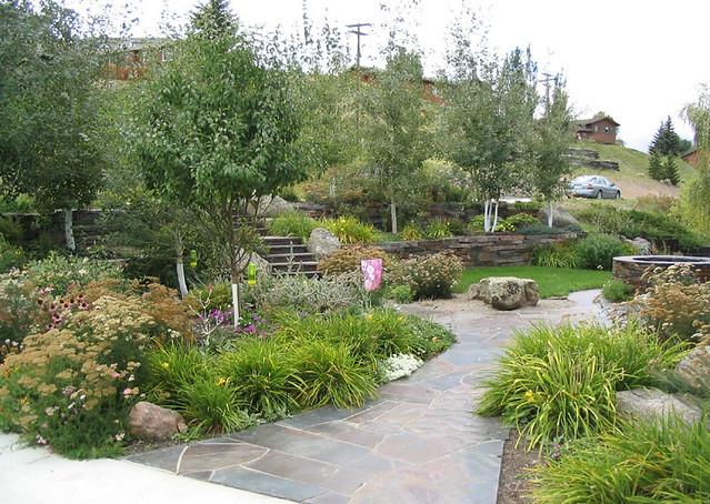 A Waterwise Garden