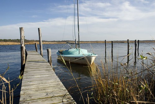 Bellport LI by Alida's Photos