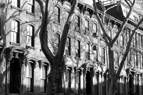 Brownstones in Black & White