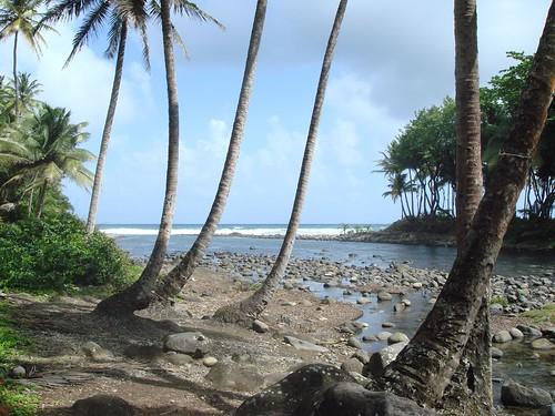 "Dominica 2007 ""Caribbean Island"""