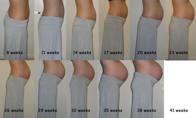 Pictures Of Pregnant Belly Month By Month Chart Kidskunstfo