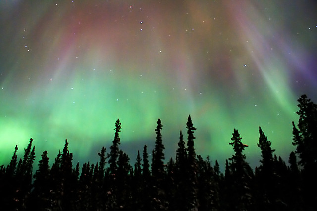 Northern lights in Whitehorse, Yukon, Canada