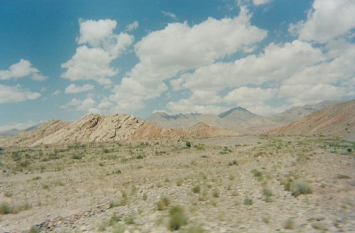 2005 china xinjiang