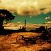 Australian landscape by ambientlight