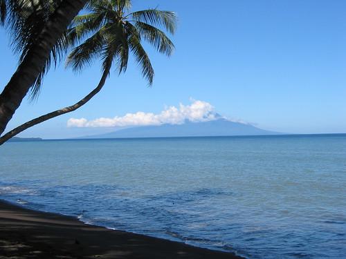 Karkar From New Guinea