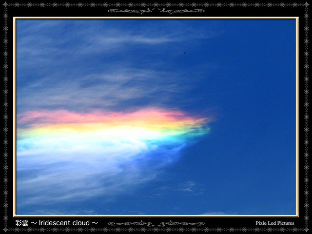 彩雲 (航空機)の画像 p1_9