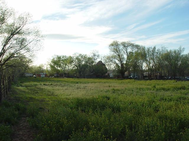 Back Field, 2005.04.07