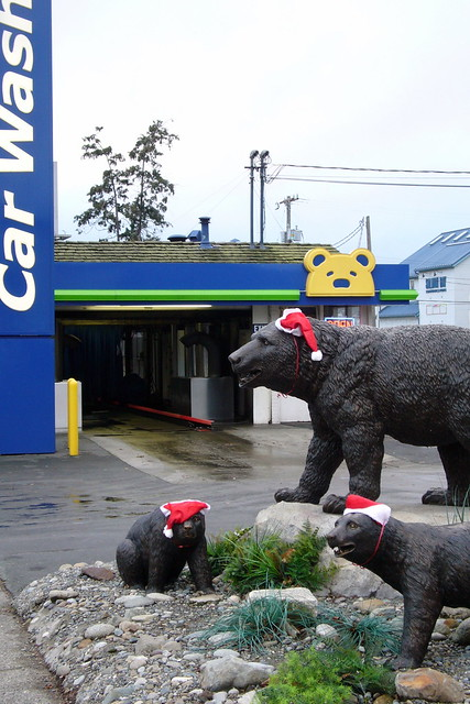 Brown Bear Car Wash Buckets