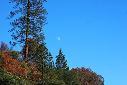 california blue sky moon mountain tree 20d canon landscape daylight photo sierra photograph half sacramento noon midday placercounty casch canon2880f284l familygetty