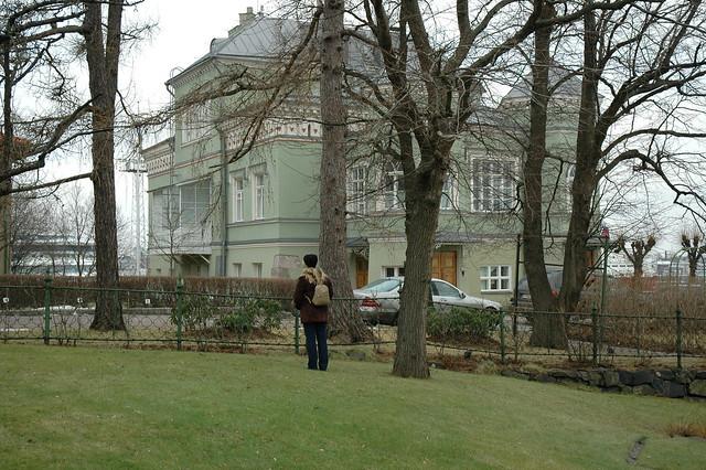 Ilkka Luoma -- B0001174 -- Lumettomuutta Helsingissä jo vuosi sitten tammikuussa
