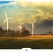 Golden Weather Forecast by Gert van Duinen