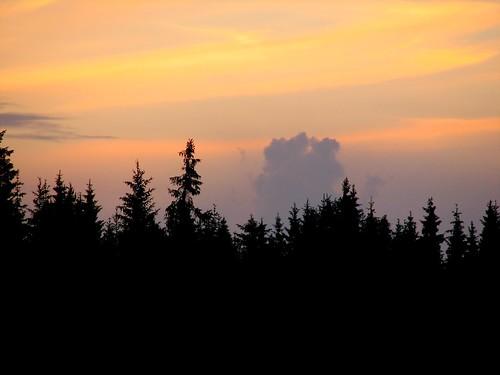 sunset cloud silhouette forest penttilänmäki