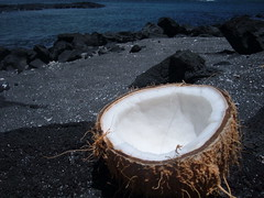 coconut: best source of saturated healthy fat