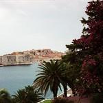 The Honeymoon Begins - Dubrovnik, Croatia