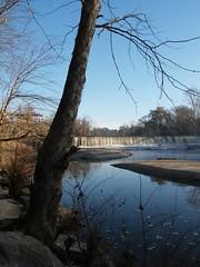 Milburnie Dam3