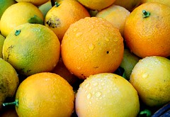 clementine, citrus, orange, valencia orange, lemon, vegetarian food, yuzu, produce, fruit, food, tangelo, sweet lemon, bitter orange, tangerine,
