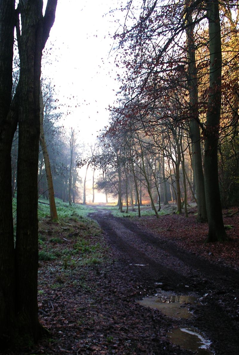 Book 2, Walk 3b, Saunderton Round via Wheeler End Midweek Day Walk, 20 December 2006