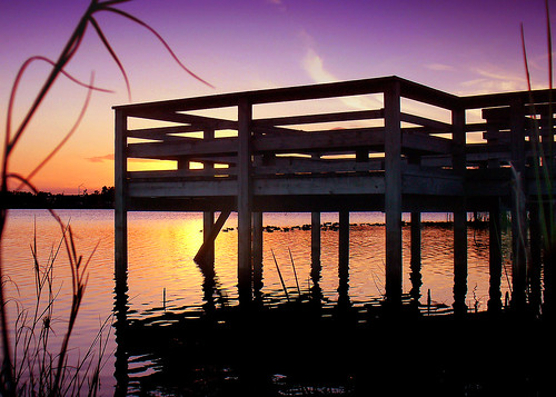 pink blue sunset red sky orange sun lake color reflection water colors beautiful sunshine silhouette clouds wow wonderful lago gold amazing fantastic dock colorful tramonto purple florida horizon peaceful lakeview lillypads magnifico atthelake lakefredrica 1on1sunrisesunsets anawesomeshot