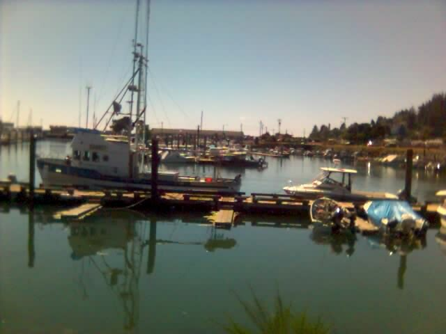 Tillamook bay at garilbaldi oregon flickr photo sharing for Tillamook bay fishing