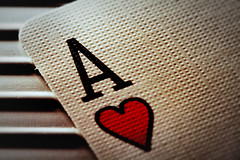 Do you love Bicycle Cards?
