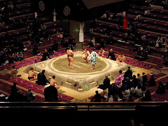 sumo, wrestling, audience,