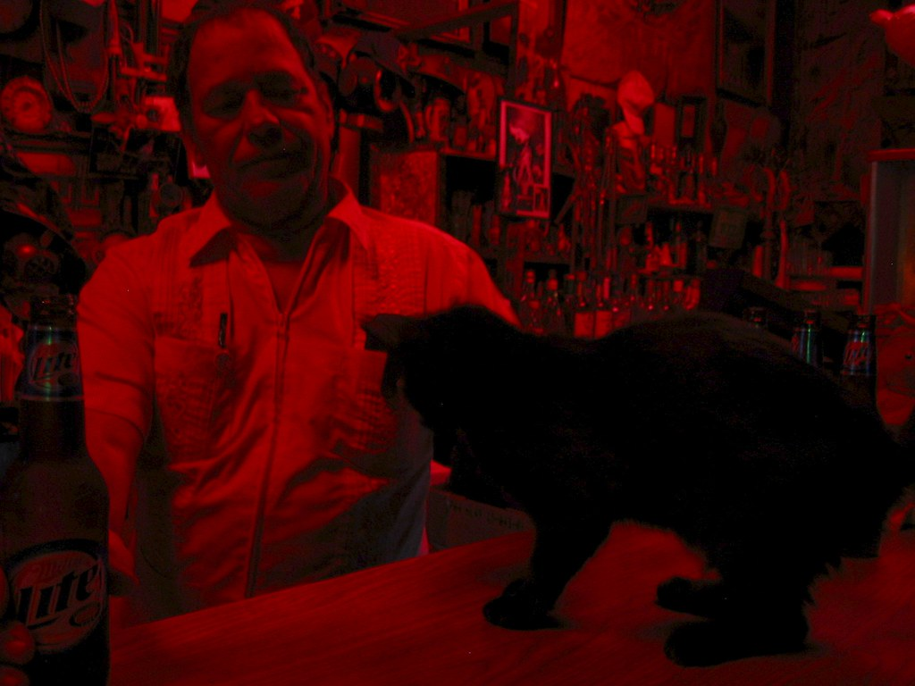 the owner of the saturn bar and one of the cats who lived there.  this was taken in 2004.