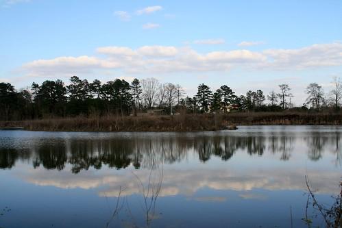 winter sky reflection nature water landscape ilovenature pond louisiana seasons reflectionsof mrgreenjeans gaylon canonef28135mmf3556isusm blackwaterconservationarea gaylonkeeling