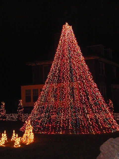 Pretty Maypole Christmas Tree Flickr Photo Sharing