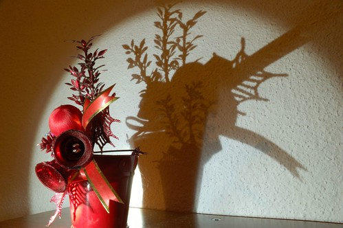 Christmas shadow
