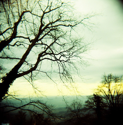 Winter »Holga