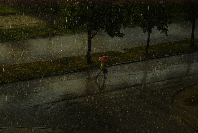 Copious: Rain Girl With Red Umbrella And Boots 5x7 Picture