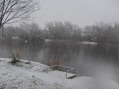 dafen pond llanelli snow