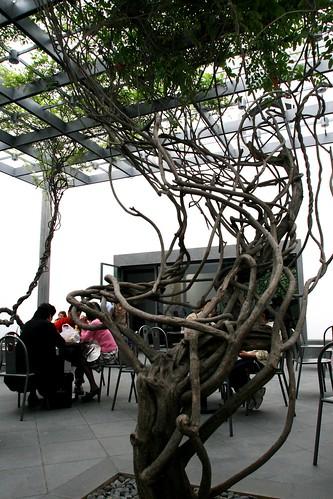 中国贝律铭苏州博物馆