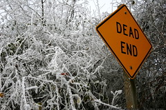 dead end   frost    MG 7201