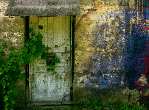 Door with ivy