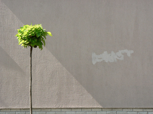 street shadow urban sunlight inspiration detail tree green art wall creativity grey graffiti daylight triangle mural hungary alone loneliness suburban geometry tag budapest images diagonal explore remove simplicity getty imagination minimalism removal visual simple exploration sunbeam thewall minimalist floodlight frontview fragment ilmuro wallscape sonofsteppe pusztafia urbanlifeoftrees