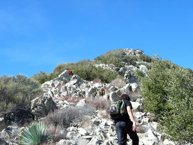 Condor Peak via Trail Canyon 036