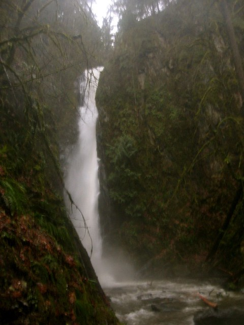 Goldstream Waterfall #4