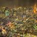 Tokyo City Lights by /\ltus