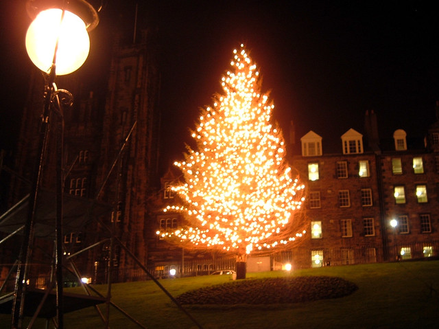 Edinburgh's tree