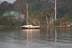 Indian River Morning i10