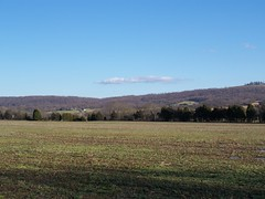 The gravel road view