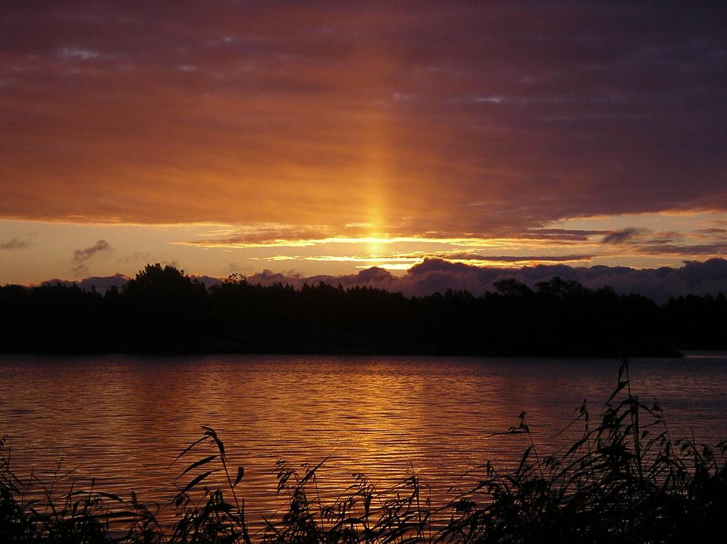 Morning sun in swedish archipelago