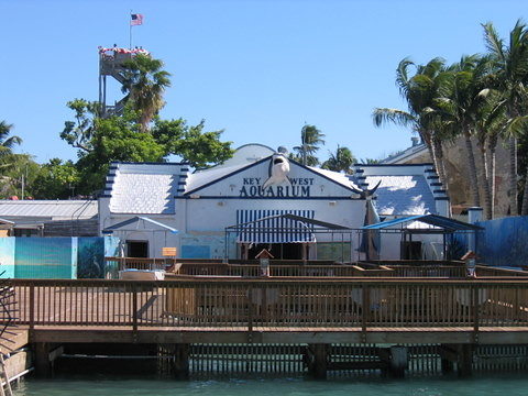 Key West Aquarium Key West Aquarium Key West Fl By John By Love My Tours Flickr