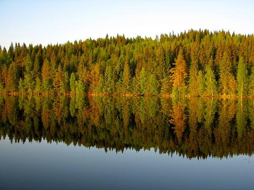 lake reflection forest abigfave penttilänmäki pieniläänä