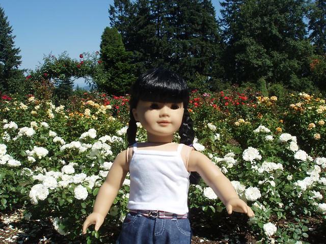 Inky in the International Rose Test Garden