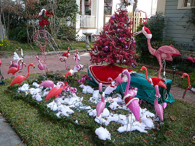 Pink Flamingo Yard  Flickr  Photo Sharing. Make Christmas Arts Crafts. Purple Decorations For Christmas Tree. Christmas Tree Ornament Designs. Cheap Christmas Decorations Shop. Disney Christmas Decorations Nz. Christmas Ideas For Tables Settings. Ideas For A Christmas Tree Farm. Christmas Decorations For The Garden Uk