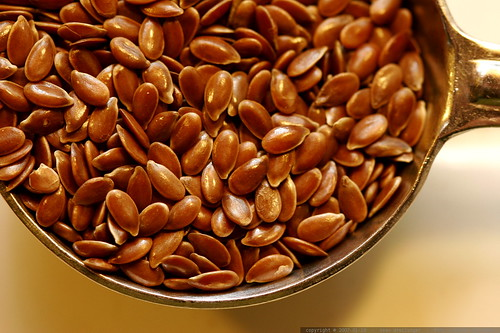 tablespoon of flax seeds    MG 8879