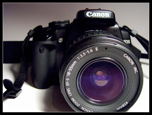 Picking the Right Camera for Great Action Shots