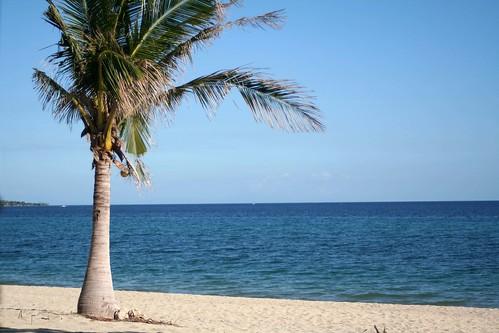 Destination soleil en hiver pas cher   vacances d hiver au soleil ... 06e972fc4ec9